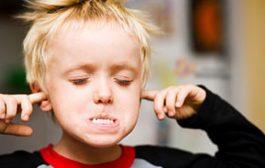 عوامل ایجاد لجبازی در کودکان