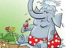 اَه اَه اَه؛ نگاهش کن... انگار از دماغ فیل افتاده!