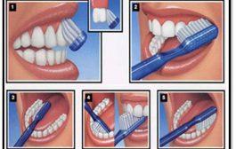 دندان های خود را به صورت افقی مسواک بزنیم یا عمودی؟