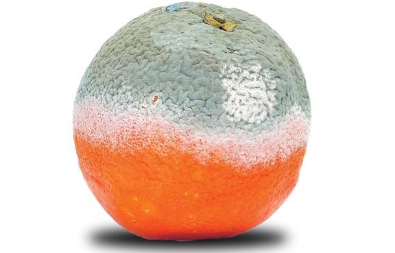 محلول اسپری طبیعی افزایش دهنده عمر میوه ها و سبزیجات