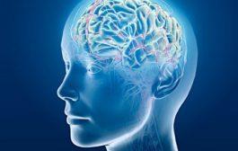 راهکارهای تقویت حافظه فعال