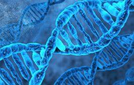 نقایص ژنتیک ناشی از ازدواج های فامیلی
