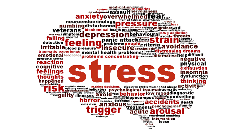 global-women-connected-stressbrain