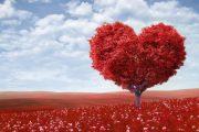 ماهیت عشق چیست؟