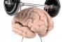 راه های مقابله با فراموشی و بهسازی حافظه