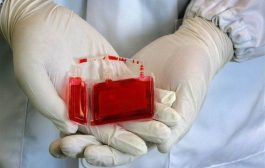 بانک خون بندناف رویان بیماران غیرخونی را تحت درمان قرار داده است